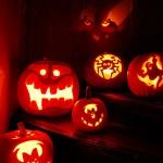 Halloween: Kürbis schnitzen 2008