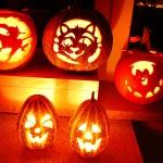 Halloween - Kürbis schnitzen 2008