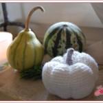 Herbst-Deko mit Zierkürbis und Häkelkürbis