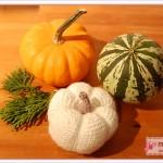 Herbst-Dekoration mit Zierkürbis und Häkelkürbis