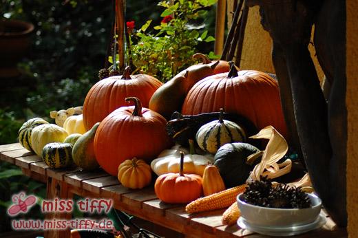 Bereit für die Herbstdeko!