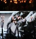 Außen-Deko: Lichtsterne und Tannezweige im Blumenkasten