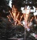 Außen-Deko: Lichtzweige und Tannenzweige im Blumenkasten