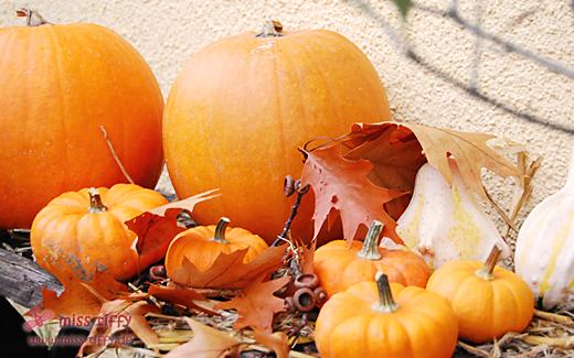 Binenstich » HerbstDeko
