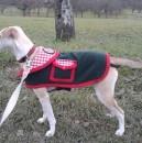 Hundemantel für Stella (burda-Schnitt)