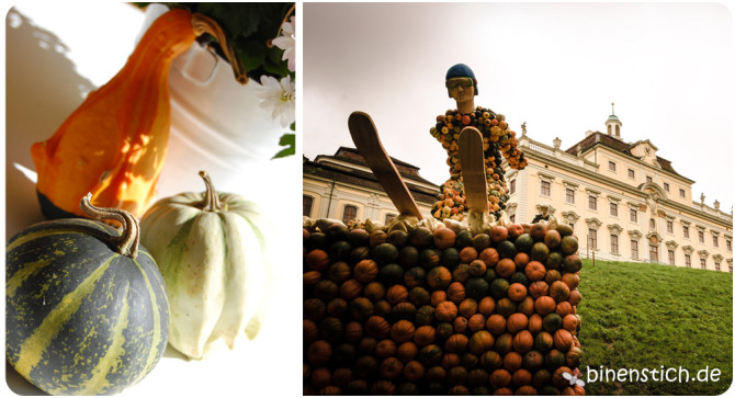Herbst-Highlight: Kürbis-Deko und Kürbis-Ausstellung | binenstich.de