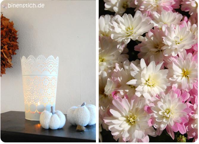 Herbst-Highlights | binenstich.de