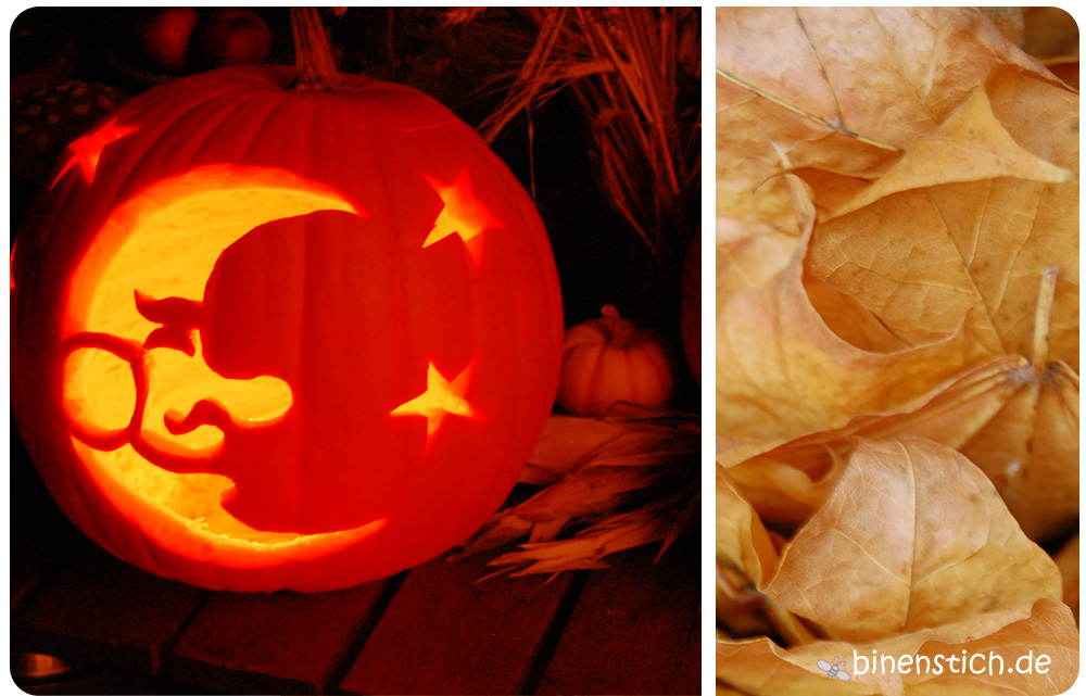 Happy Halloween: Kürbis schnitzen 2013   Binenstich
