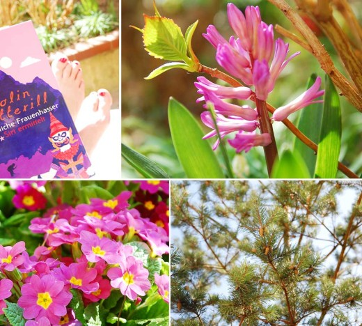 Mittagspaue mit Krimi, Sonne satt, Blumen und vor Wärme knackenden Kiefernzapfen.