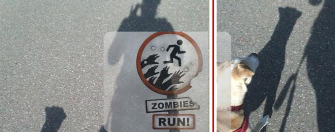 Gute Zeiten 16: Laufen mit Zombies, Run und Stella-Hund | binenstich.de