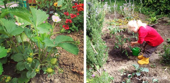 Gute Zeiten 18: Gartenfreuden mit Kind: Tomaten pflanzen, auf Erdbeeren freuen... | binenstich.de