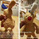 Hase nähen: Der Hase mit der roten Nase und dem blauen Ohr, genäht nach einem Ebook von binenstich
